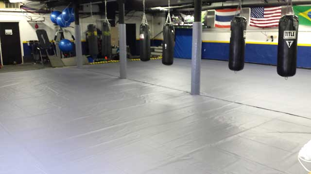 Mixed Martial Arts Mat cover